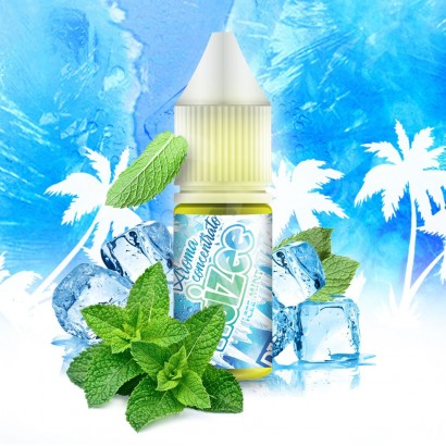 Aromi Concentrati Icee Mint FRUIZEE - Aroma Concentrato 10ml